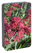 Gorgeous Cluster Of Red Phlox Flowers In A Garden Portable Battery Charger