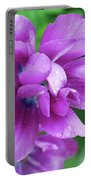 Gorgeous Flowering Purple Tulip Flower Blossoms In A Garden Portable Battery Charger