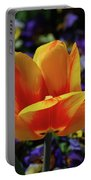 Gorgeous Flowering Yellow And Red Blooming Tulip Portable Battery Charger