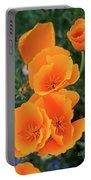 Gorgeous Orange California Poppies Portable Battery Charger