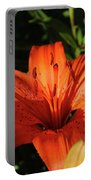 Gorgeous Pretty Orange Lily Flower Blooming In A Garden Portable Battery Charger