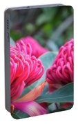Gorgeous Waratah -floral Emblem Of New South Wales Portable Battery Charger