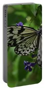Gorgeous White Tree Nymph Butterfly With It's Wings Spread Portable Battery Charger