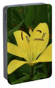 Gorgeous Yellow Lily Growing In Nature Up Close Portable Battery Charger