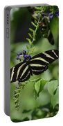 Gorgeous Zebra Butterfly On Some Blue Flowers Portable Battery Charger
