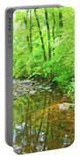 Georgia Stream In Summer Portable Battery Charger