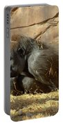 Gorilla Musings Portable Battery Charger