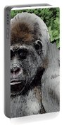 Gorilla My Dreams Portable Battery Charger