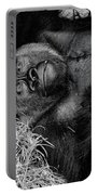 Gorilla Pose Portable Battery Charger