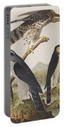 Goshawk And Stanley Hawk Portable Battery Charger