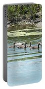 Goslings In A Row Portable Battery Charger