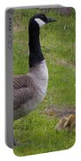 Goslings With Mother Goose Portable Battery Charger