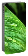 Gotas Portable Battery Charger