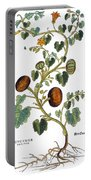 Gourd, 1735 Portable Battery Charger