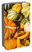 Gourds Pile 1 A Portable Battery Charger