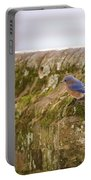 Governor's Palace Bluebird Portable Battery Charger
