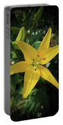 Grace Flowers Daylily Art Portable Battery Charger