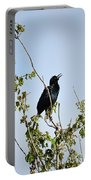 Grackle Cackle Portable Battery Charger