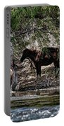 Graffiti An Horses  Portable Battery Charger