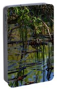 Grand Beach Marsh Portable Battery Charger