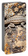 Grand Canyon Lizard Portable Battery Charger