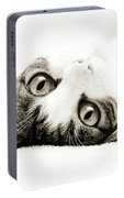 Grand Kitty Cuteness Bw Portable Battery Charger