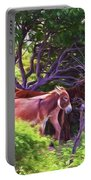 Grand Turk Donkeys In The Shade Portable Battery Charger