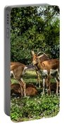 Grants Gazelle  Portable Battery Charger by Gary Keesler