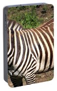 Grant's Zebra-0520 Portable Battery Charger