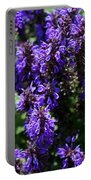Grape Glory Portable Battery Charger