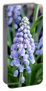 Grape Hyacinths Closeup Portable Battery Charger