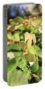 Grape Vine 3 Portable Battery Charger