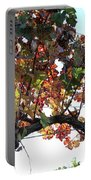 Grape Vine In Autumn Portable Battery Charger