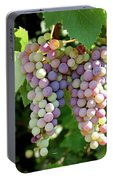 Grapes In Color  Portable Battery Charger