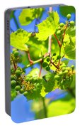 Grapevine Portable Battery Charger