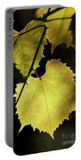 Grapevine In The Back Lighting Portable Battery Charger by Michal Boubin