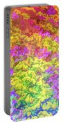 Graphic Rainbow Colorful Garden Portable Battery Charger