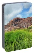 Grass Along John Day River In Central Oregon Portable Battery Charger