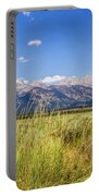 Grass In The Wind Portable Battery Charger