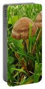 Grass Mushroom Pair           Tubaria Fungii           May           Indiana Portable Battery Charger