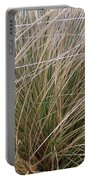 Grasses 5 Portable Battery Charger