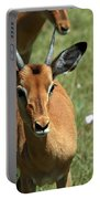 Grassland Deer Portable Battery Charger