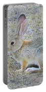 Grassland Youngster Portable Battery Charger