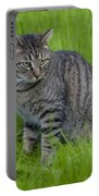 Gray Cat In Vivid Green Grass Portable Battery Charger