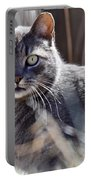 Gray Cat In Woods Portable Battery Charger