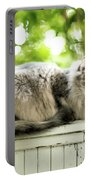 Gray Cat Sitting On A Balcony Portable Battery Charger