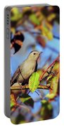 Gray Catbird Framed By Fall Portable Battery Charger