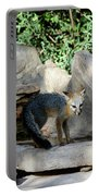 Gray Fox 4 Portable Battery Charger