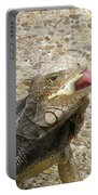 Gray Iguana Eating Lettuce With His Pink Tongue Sticking Out Portable Battery Charger