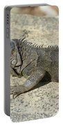 Gray Iguana With Long Talons Sitting On A Rock Portable Battery Charger
